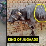 Indians Are The King Of Jugaads